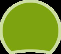 icône fond vert